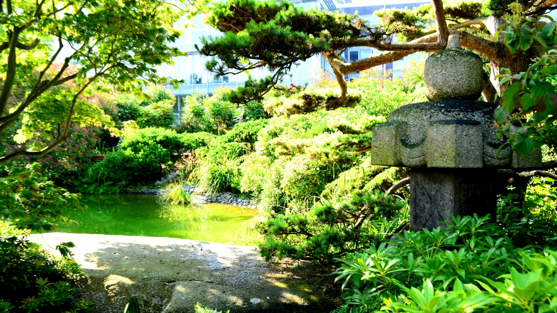 01 03 - Jardin Japonais Le Havre